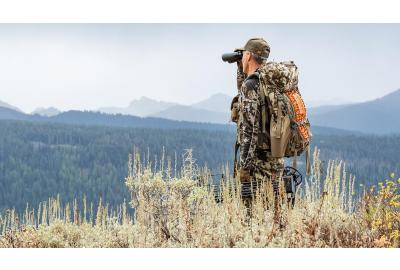 Your Guide to a DIY, Bowhunting Adventure